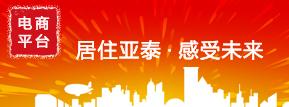 電(dian)商(shang)平台 副本.JPG